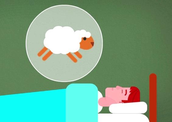 считаем овец и засыпаем